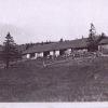 1931-8.jpg