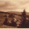 3-118-1928