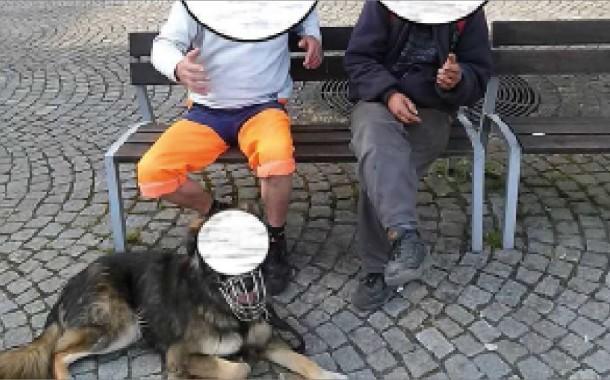 Šternberk posouvá celosvětovou laťku v novinářské etice a ochraně osobnosti všech živých tvorů