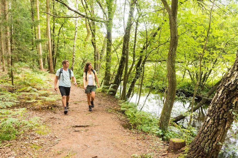 Chodíte rádi do přírody? Máte zajímavé trasy a tipy? Podělte se s ostatními !